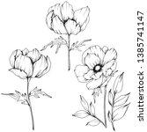 vector anemone floral botanical ...   Shutterstock .eps vector #1385741147