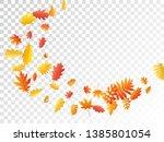 oak  maple  wild ash rowan... | Shutterstock .eps vector #1385801054