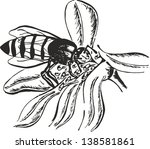 bee on flower vector | Shutterstock .eps vector #138581861