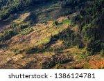 samaba rice terrace fields in... | Shutterstock . vector #1386124781