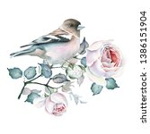 Watercolor Bird And Rose...