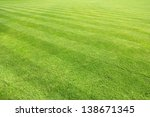 big lawn | Shutterstock . vector #138671345