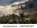 samaba rice terrace fields in... | Shutterstock . vector #1387005287