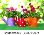 daisy flowers on grass on...   Shutterstock . vector #138710075