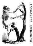 Chimpanzee Skeleton Which Is ...