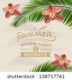 sandy beach vector background... | Shutterstock .eps vector #138717761