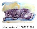 Watercolor Cat Illustraion...