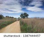 sant pere pescador  alt empord  ... | Shutterstock . vector #1387444457
