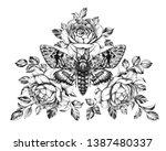 hand drawn acherontia styx...   Shutterstock . vector #1387480337