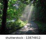 sunlight through woods | Shutterstock . vector #13874812