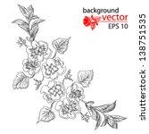 monochrome branch flower pansy...   Shutterstock .eps vector #138751535