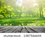 wooden table and spring forest... | Shutterstock . vector #1387566644