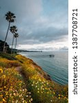 flowers and view of scripps... | Shutterstock . vector #1387708721