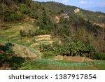 samaba rice terrace fields in... | Shutterstock . vector #1387917854