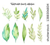 watercolor hand draw leaves...   Shutterstock . vector #1388306834