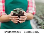 female garden center employee... | Shutterstock . vector #138833507