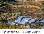 samaba rice terrace fields in... | Shutterstock . vector #1388493044