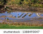 samaba rice terrace fields in... | Shutterstock . vector #1388493047