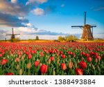 Beautiful Dutch Scenery With...