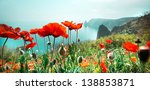 meadow with red poppy flowers... | Shutterstock . vector #138853871