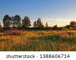 landscape with coloful sunset... | Shutterstock . vector #1388606714