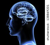 brain   3d illustration. | Shutterstock . vector #138869201