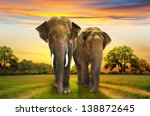 elephants family on sunset | Shutterstock . vector #138872645