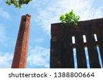 ayutthaya province  thailand  ...   Shutterstock . vector #1388800664