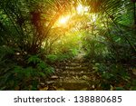 Path With Stairs In A Tropical...