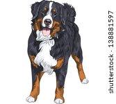 Vector Big Cute Dog Breed...