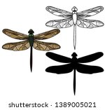 insect dragonfly  sketch and... | Shutterstock .eps vector #1389005021