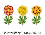 Three Fantastic Flower On A...
