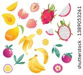 set with exotic fruits  whole... | Shutterstock .eps vector #1389053261