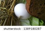 egg and bread on the background ... | Shutterstock . vector #1389180287