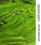 aerial view of rice terraces.... | Shutterstock . vector #1389204587