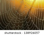 The Web With Drops Of Dew...