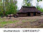 reconstruction of ancient slav... | Shutterstock . vector #1389336917