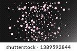 Stock vector nice sakura blossom isolated vector summer falling d petals wedding paper japanese blurred 1389592844