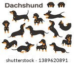 Dachshund Illustration Dog...
