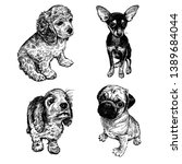 Stock vector cute puppies of terrier spaniel and pug set home pets isolated on white background sketch 1389684044