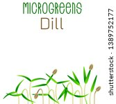 microgreens dill. seed... | Shutterstock .eps vector #1389752177