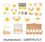 fresh and boiled eggs. cartoon... | Shutterstock .eps vector #1389791717