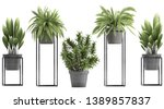 3d Digital Render Of Plant...