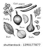 cooking ingredients. ink sketch ... | Shutterstock .eps vector #1390177877