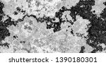 closeup of black white old...   Shutterstock . vector #1390180301