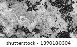 closeup of black white old...   Shutterstock . vector #1390180304
