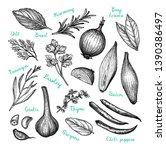 cooking ingredients. ink sketch ... | Shutterstock .eps vector #1390386497