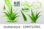 pharmacy succulent aloe vera... | Shutterstock .eps vector #1390712501