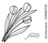 Tulip flowers sketch. Vector
