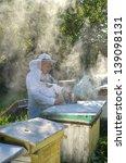 experienced senior apiarist in... | Shutterstock . vector #139098131
